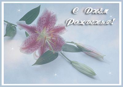 Открытки с днем рождения лилия гифки, открытки для гены