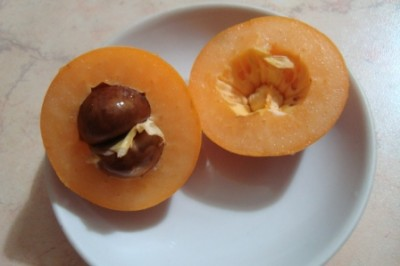 Курага что это за фрукт