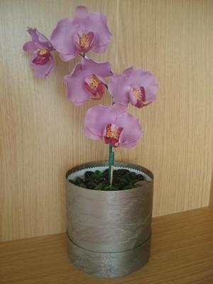 делала орхидеи из желатиновой мастики,низ коробка ,кушать нельзя,это в подарок на день рождение леб.