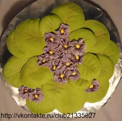 Рецепты домашних тортов с видео