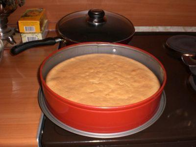фото карины тесто