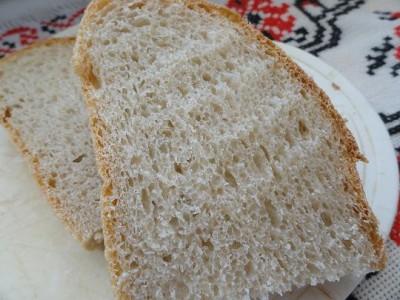 фото сеять хлеб