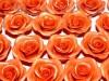 Другой вариант изготовления розы.