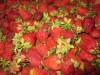 Клубничная подливка с целыми ягодами( заморозка)
