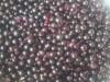 Сырое варенье из черной смородины