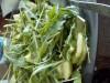 Лёгкий салат с рукколой, киви и огурцом